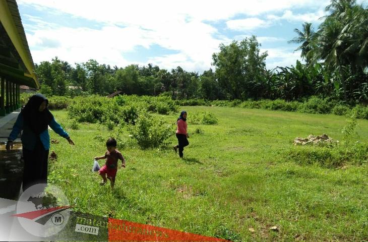 Pedagang Sapi Minta Pemerintah Hidupkan Pasar Hewan Batang-Batang