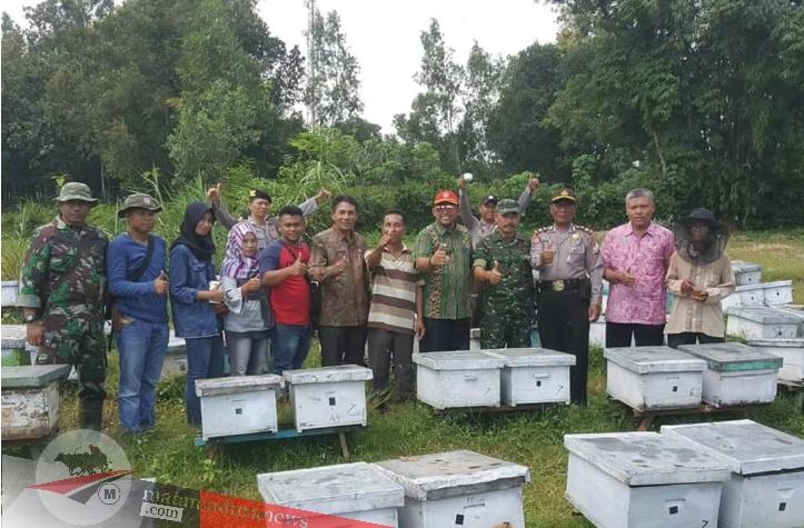Ingin Kembangkan Wisata Ternak Lebah-Kebun Bunga, Ini Sumber Inspirasi Camat Rubaru