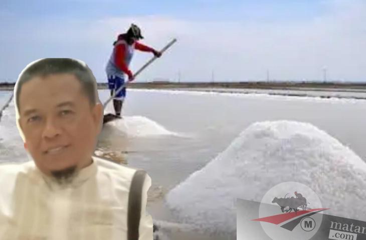 Awal Musim,Harga Garam Rp 500 ribu/ton. Petani Garam Menjerit