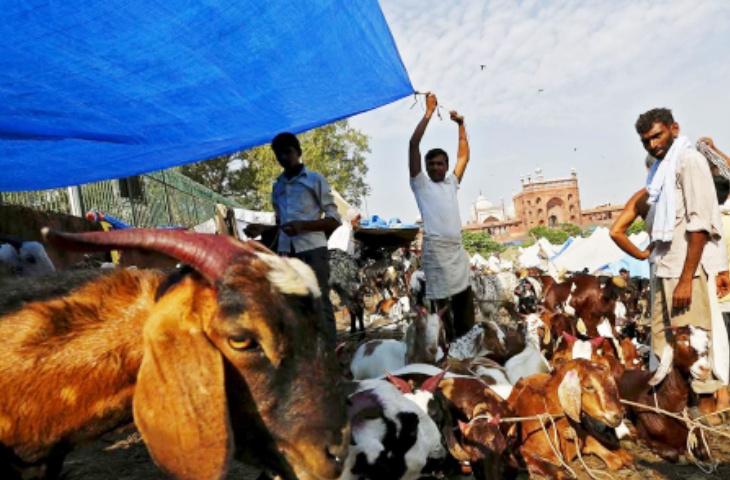 Ketika Umat Islam di India Dilarang Rayakan Idul Adha Potong Kurban